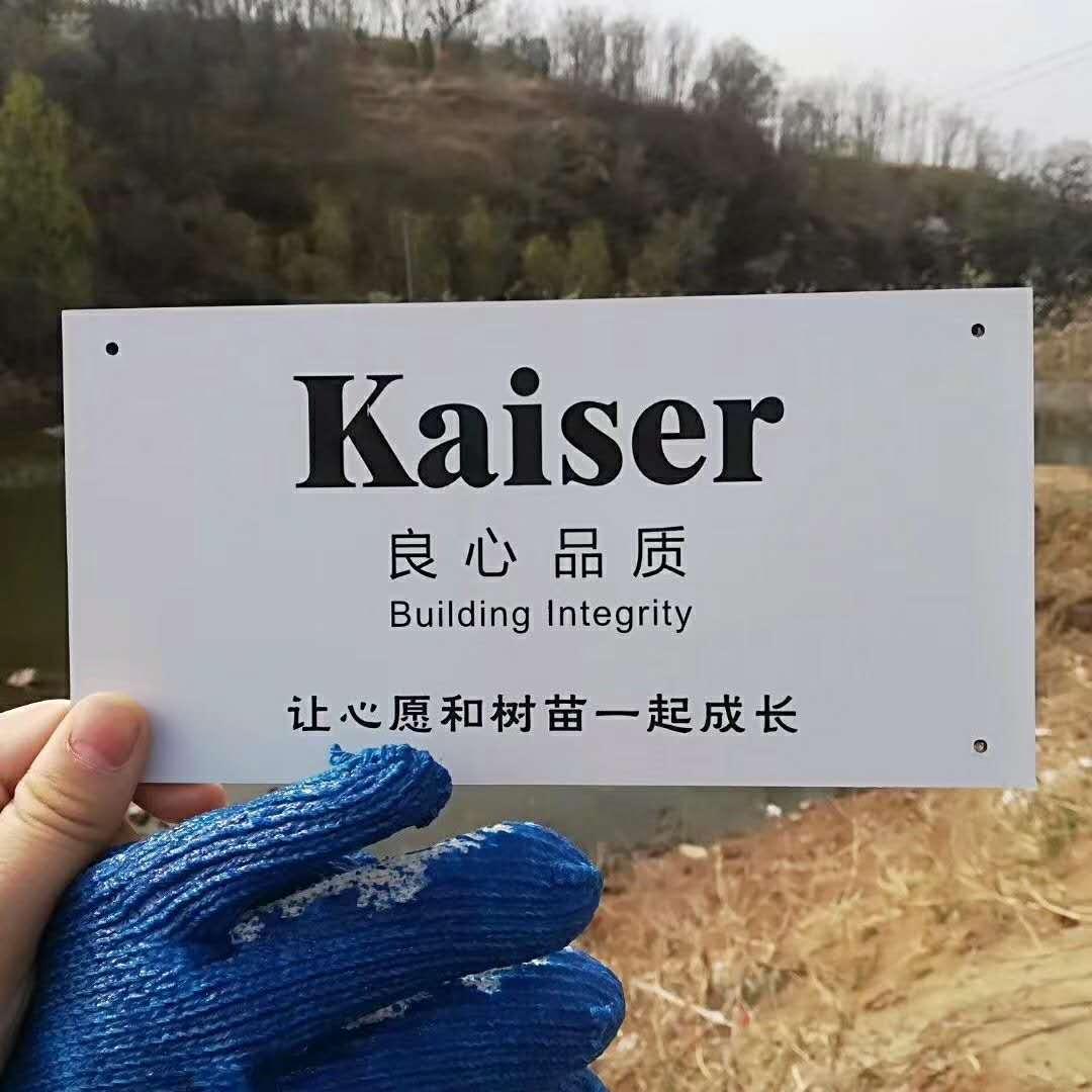 kaiser and friends